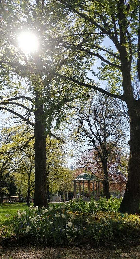 Der grüne Stadtpark mit Blick auf den Pavillion in Kempten
