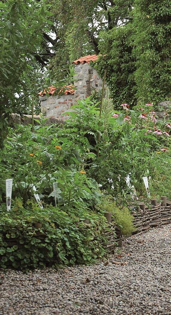 Der Duft- und Heilpflanzengarten auf der Burghalde Kempten