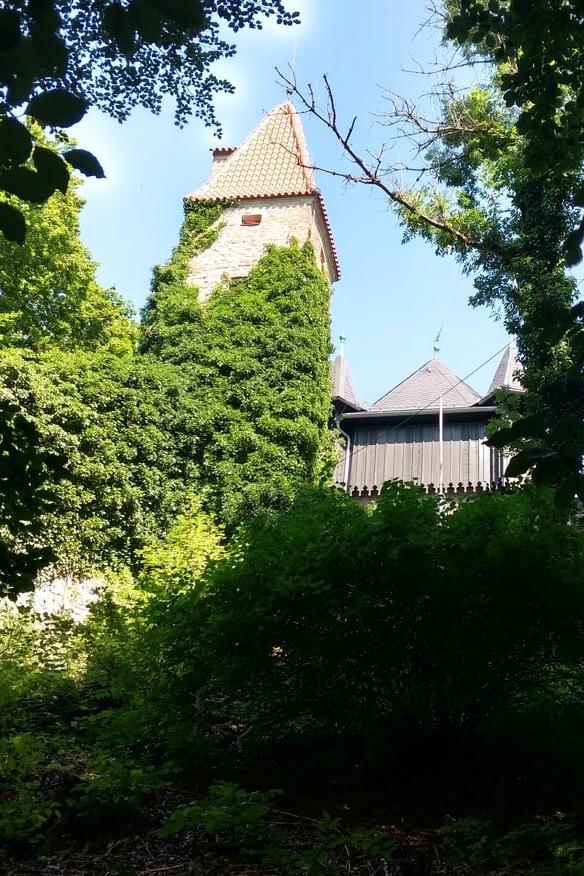 Ansicht von unten, die Burghalde in Kempten