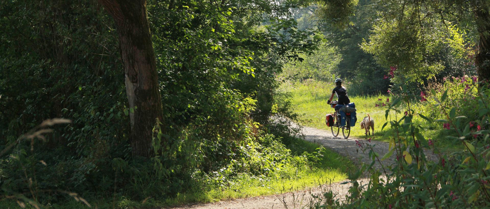 Radfahrerin mit Hund auf dem Jakobus-Pilgerradweg © Allgäu GmbH, Gerhard Eisenschink