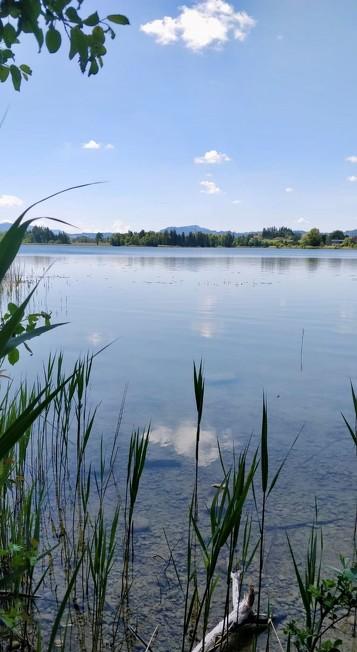 Blick auf den Öschle See