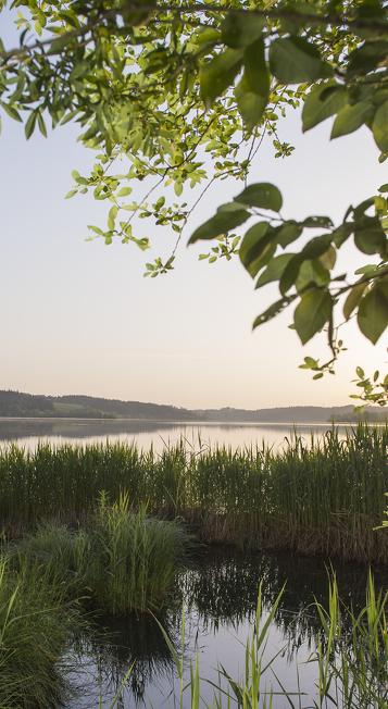 Blick auf den Rottachsee © Klaus-Peter Kappest, Germany